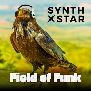 Field of Funk Album Art