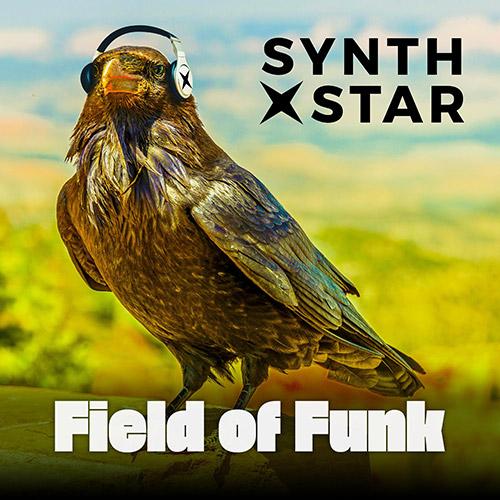 Field of Funk Album Art