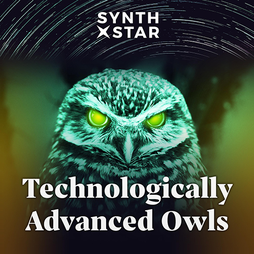 Technologically Advanced Owls Album Art